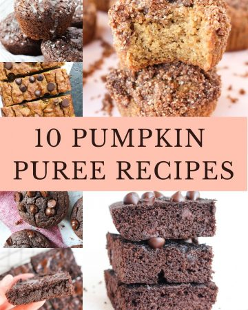 Large collage of 10 pumpkin puree recipes!